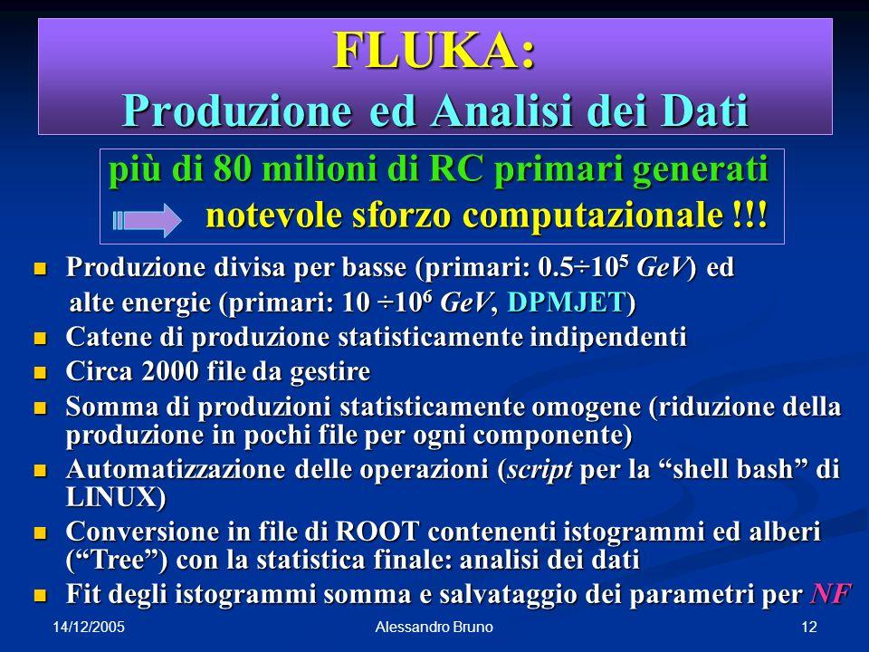 14/12/2005 12Alessandro Bruno FLUKA: Produzione ed Analisi dei Dati più di 80 milioni di RC primari generati notevole sforzo computazionale !!! notevo