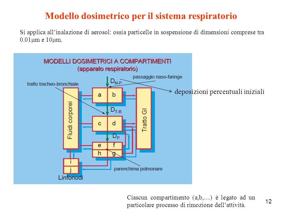 12 Modello dosimetrico per il sistema respiratorio Si applica allinalazione di aerosol: ossia particelle in sospensione di dimensioni comprese tra 0.0