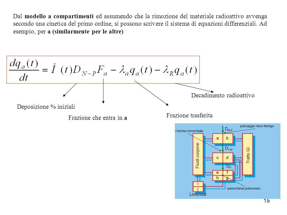15 Dal modello a compartimenti ed assumendo che la rimozione del materiale radioattivo avvenga secondo una cinetica del primo ordine, si possono scriv