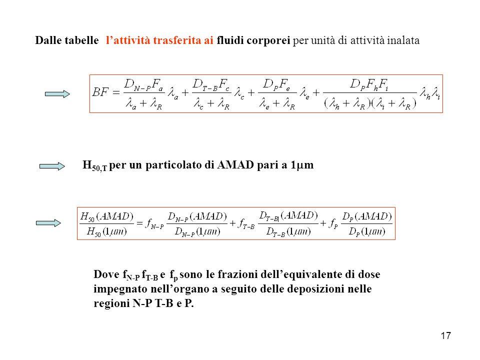 17 Dalle tabelle H 50,T per un particolato di AMAD pari a 1 m Dove f N-P f T-B e f p sono le frazioni dellequivalente di dose impegnato nellorgano a s