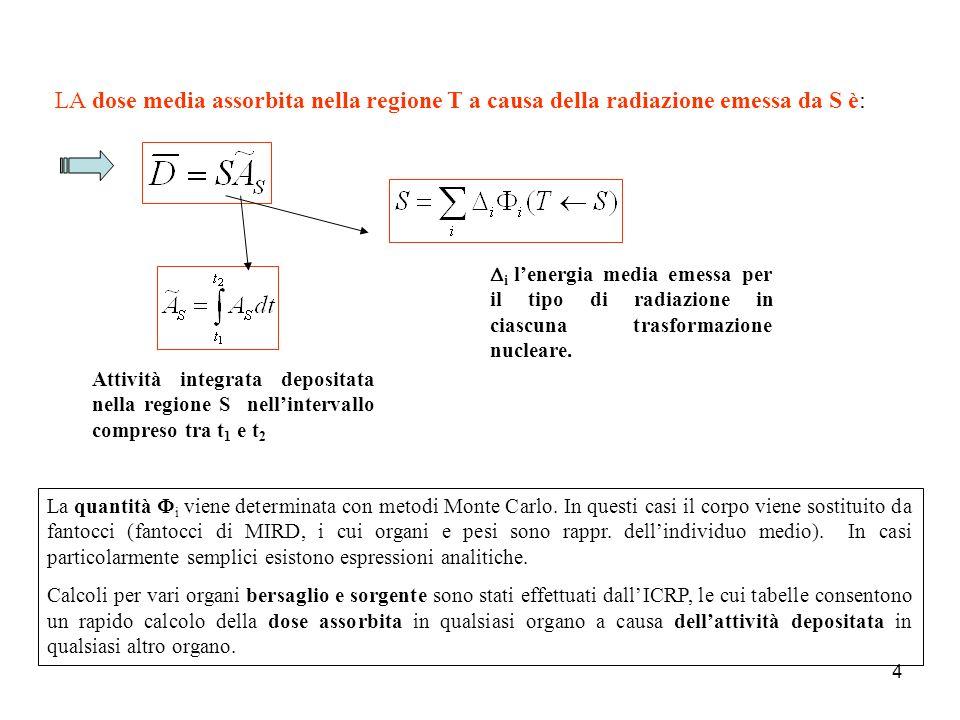 15 Dal modello a compartimenti ed assumendo che la rimozione del materiale radioattivo avvenga secondo una cinetica del primo ordine, si possono scrivere il sistema di equazioni differenziali.