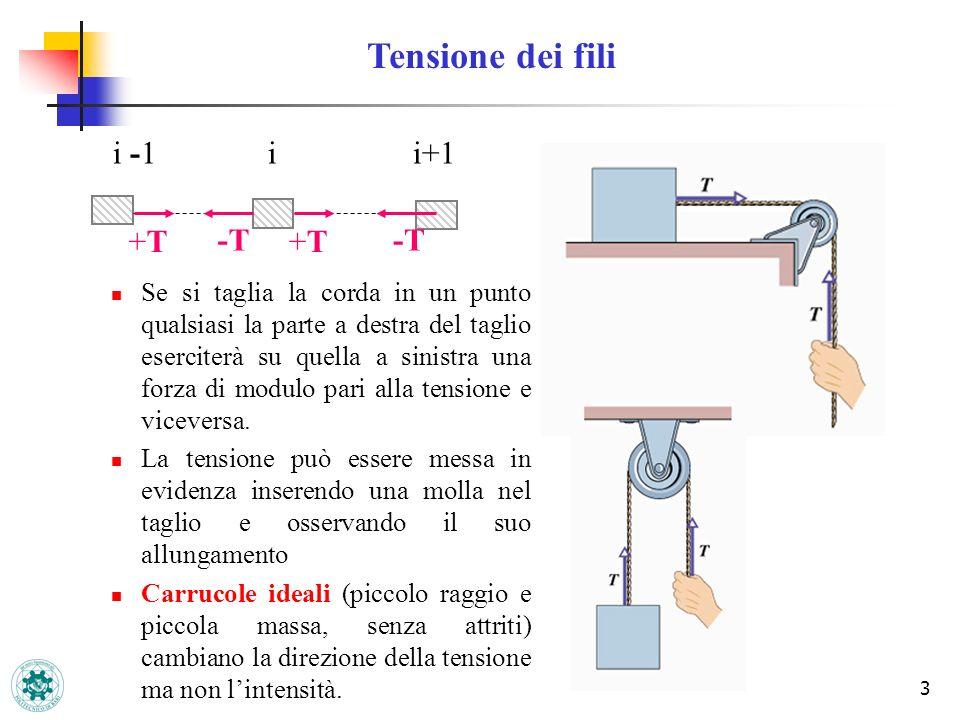 3 Se si taglia la corda in un punto qualsiasi la parte a destra del taglio eserciterà su quella a sinistra una forza di modulo pari alla tensione e vi