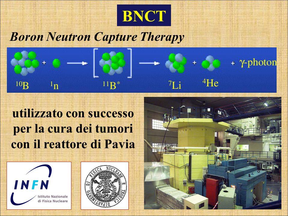 BNCT utilizzato con successo per la cura dei tumori con il reattore di Pavia Boron Neutron Capture Therapy