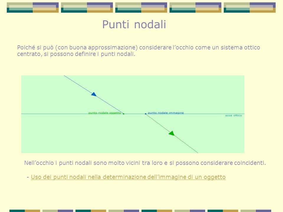 Punti nodali Poiché si può (con buona approssimazione) considerare locchio come un sistema ottico centrato, si possono definire i punti nodali. Nelloc
