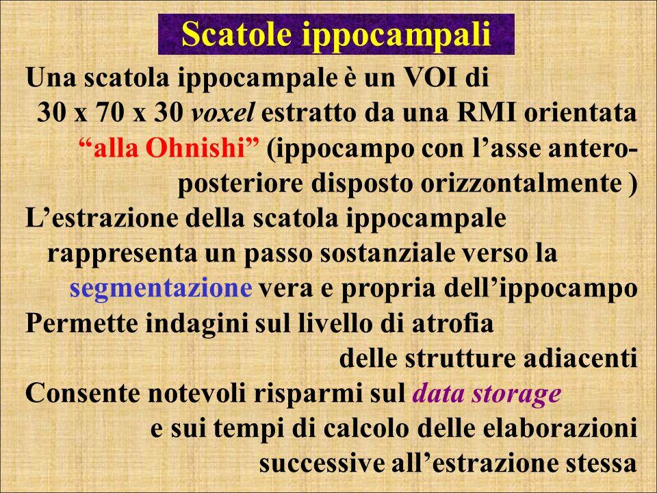 Scatole ippocampali Una scatola ippocampale è un VOI di 30 x 70 x 30 voxel estratto da una RMI orientata alla Ohnishi (ippocampo con lasse antero- pos