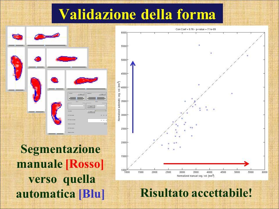 Validazione della forma Segmentazione manuale [Rosso] verso quella automatica [Blu] Risultato accettabile!