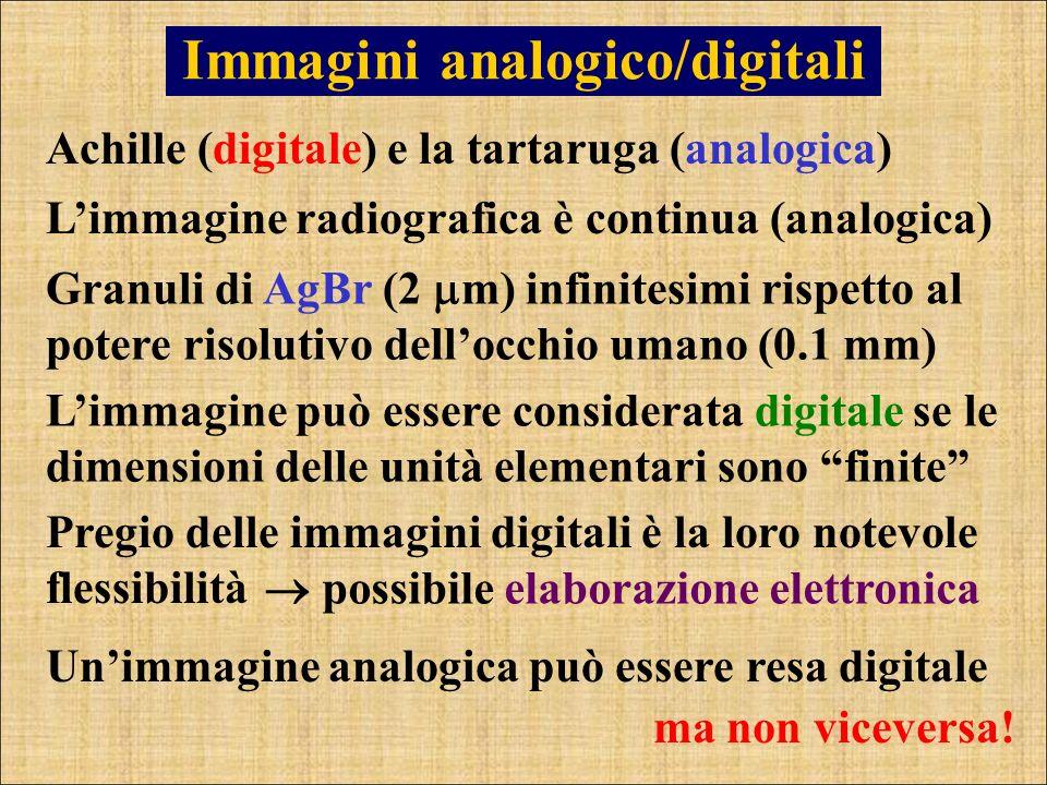 Immagini analogico/digitali Achille (digitale) e la tartaruga (analogica) Limmagine radiografica è continua (analogica) Limmagine può essere considera