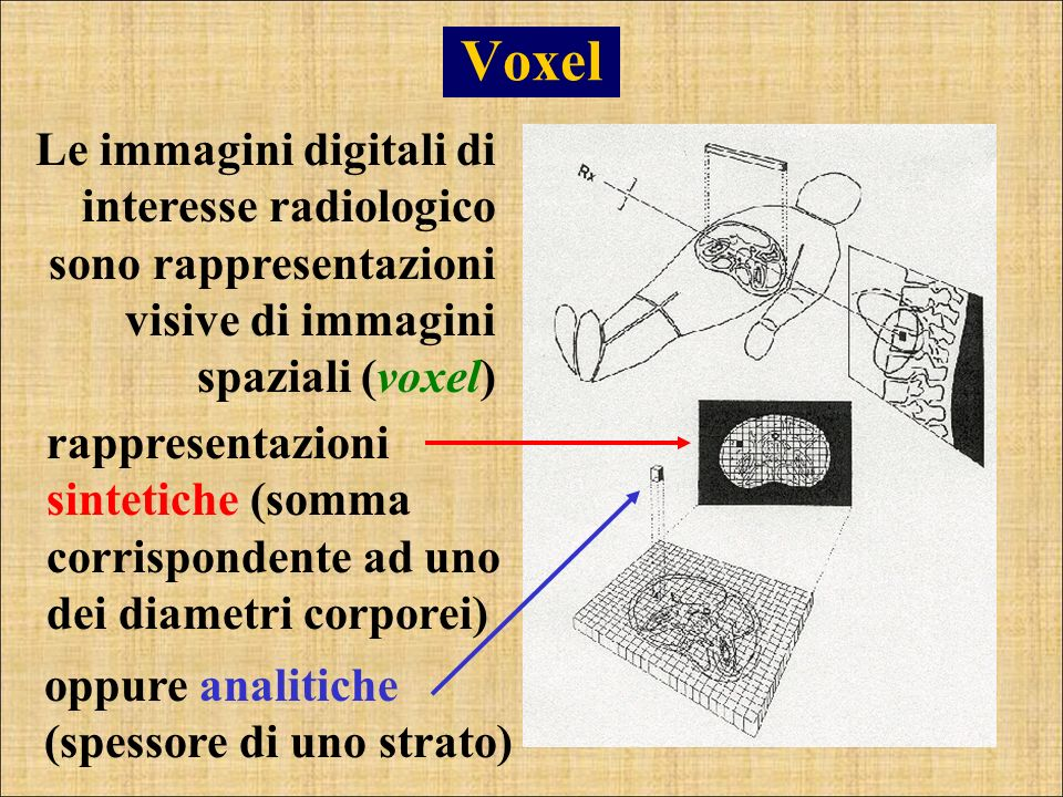 Voxel Le immagini digitali di interesse radiologico sono rappresentazioni visive di immagini spaziali (voxel) rappresentazioni sintetiche (somma corri