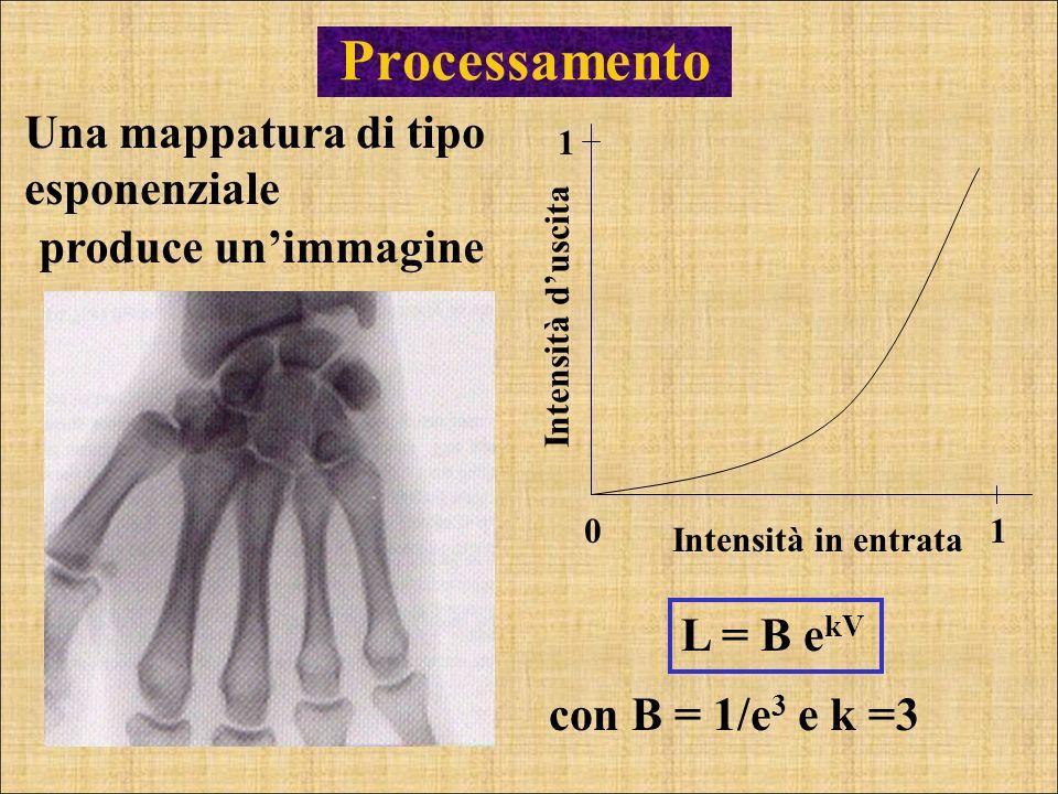Processamento Una mappatura di tipo esponenziale 01 1 Intensità duscita Intensità in entrata L = B e kV con B = 1/e 3 e k =3 produce unimmagine