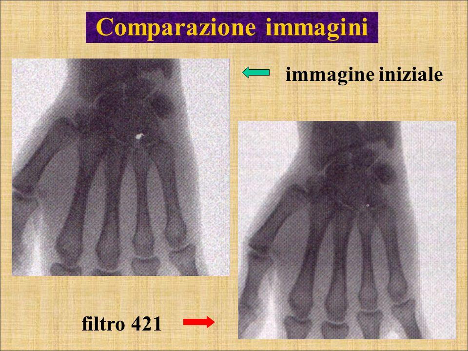 Comparazione immagini immagine iniziale filtro 421