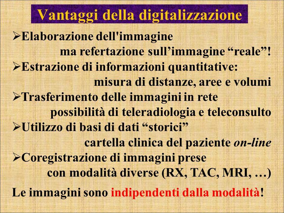 Vantaggi della digitalizzazione Elaborazione dell'immagine ma refertazione sullimmagine reale! Estrazione di informazioni quantitative: misura di dist