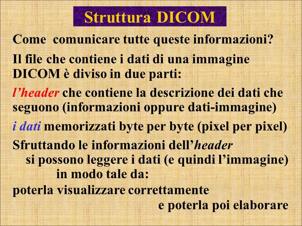 Struttura DICOM Come comunicare tutte queste informazioni? Il file che contiene i dati di una immagine DICOM è diviso in due parti: lheader che contie