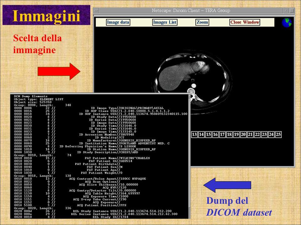 Scelta della immagine Dump del DICOM dataset Immagini