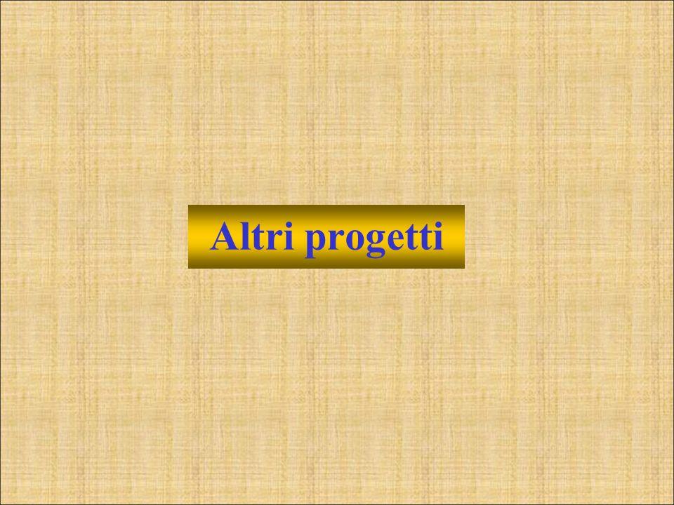 Altri progetti