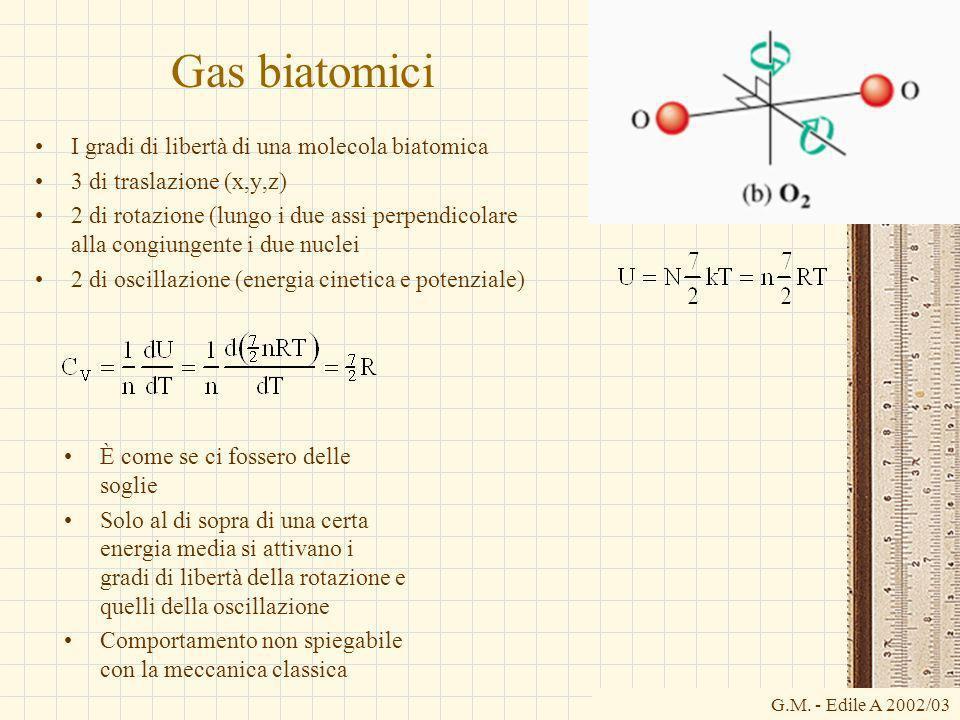 G.M. - Edile A 2002/03 Gas biatomici I gradi di libertà di una molecola biatomica 3 di traslazione (x,y,z) 2 di rotazione (lungo i due assi perpendico