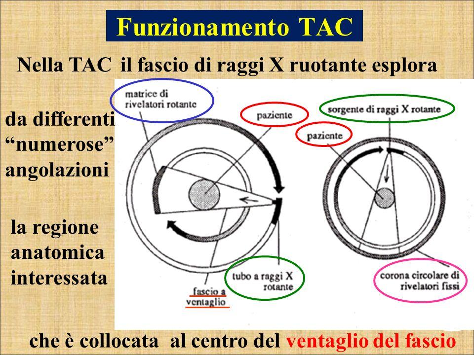 Funzionamento TAC il fascio di raggi X ruotante esplora da differenti numerose angolazioni che è collocata al centro del ventaglio del fascio la regio