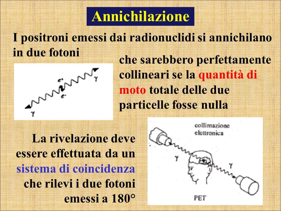 Annichilazione I positroni emessi dai radionuclidi si annichilano in due fotoni che sarebbero perfettamente collineari se la quantità di moto totale d