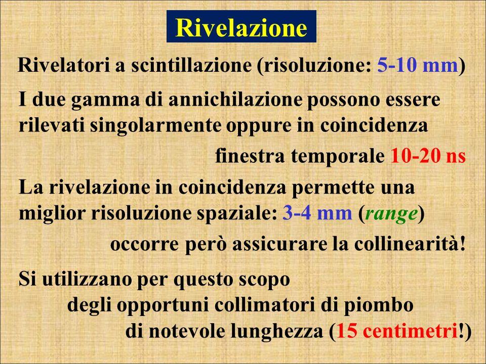 Rivelazione Rivelatori a scintillazione (risoluzione: 5-10 mm) I due gamma di annichilazione possono essere rilevati singolarmente oppure in coinciden