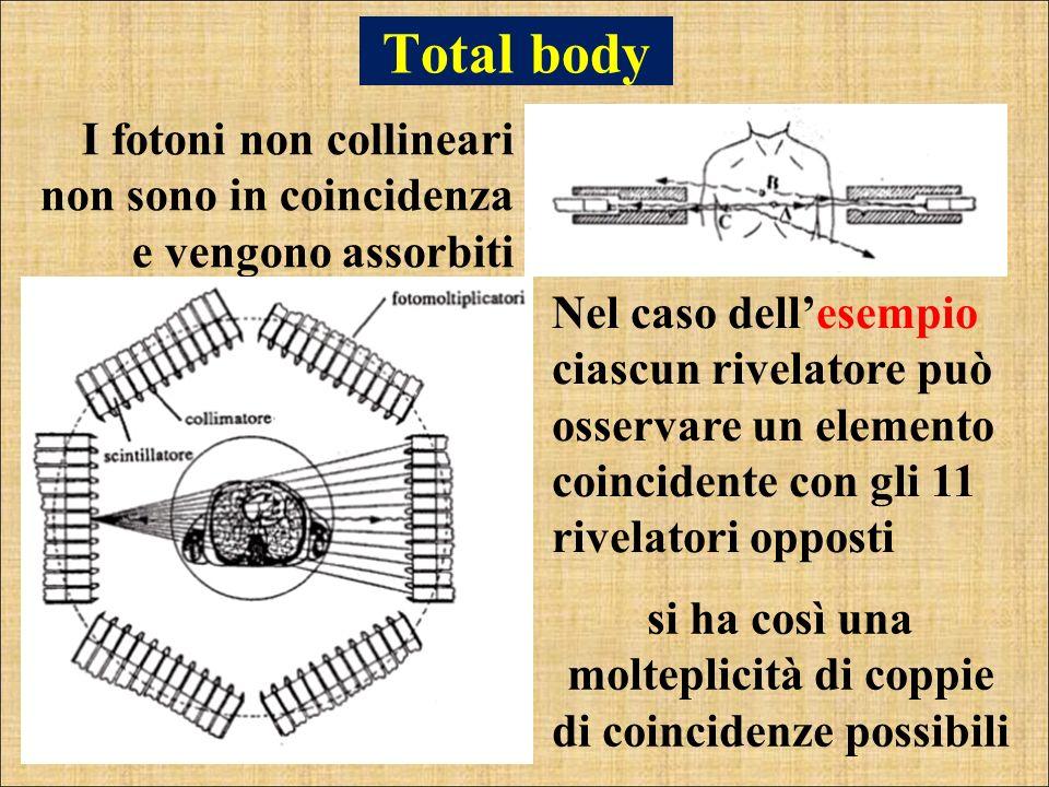 Total body I fotoni non collineari non sono in coincidenza e vengono assorbiti Nel caso dellesempio ciascun rivelatore può osservare un elemento coinc