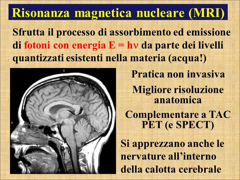 Risonanza magnetica nucleare (MRI) Migliore risoluzione anatomica Sfrutta il processo di assorbimento ed emissione di fotoni con energia E = h da part