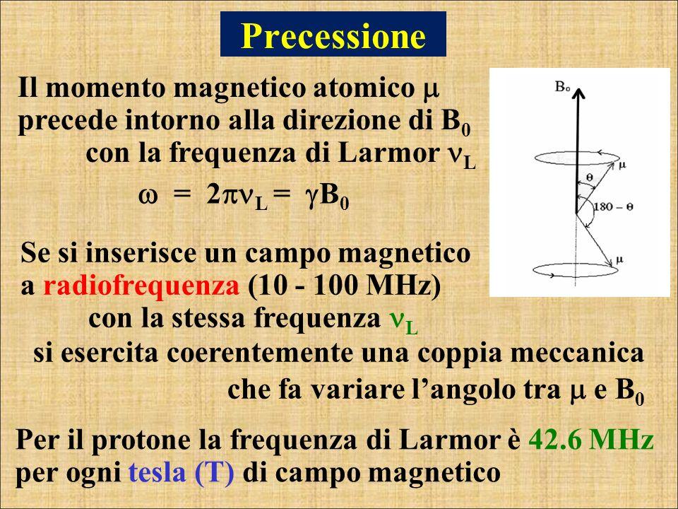 Il momento magnetico atomico precede intorno alla direzione di B 0 con la frequenza di Larmor L Precessione Per il protone la frequenza di Larmor è 42