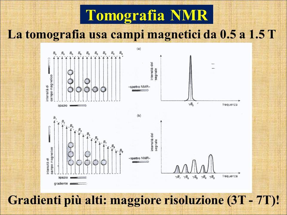 La tomografia usa campi magnetici da 0.5 a 1.5 T Tomografia NMR Gradienti più alti: maggiore risoluzione (3T - 7T)!