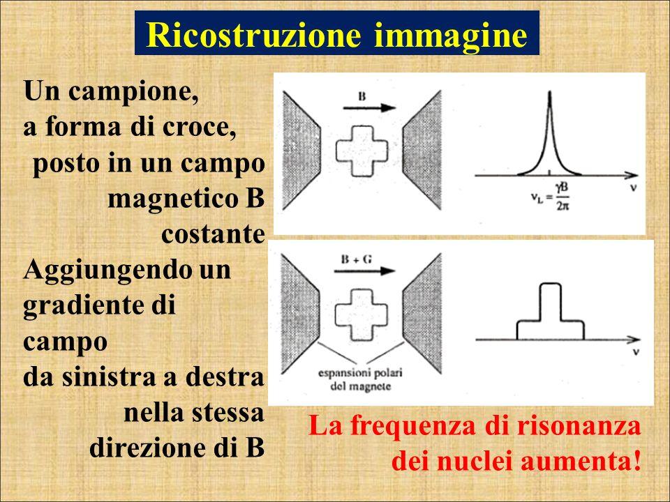 Un campione, a forma di croce, posto in un campo magnetico B costante Aggiungendo un gradiente di campo da sinistra a destra nella stessa direzione di