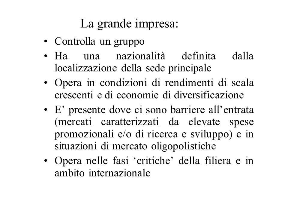 La grande impresa: Controlla un gruppo Ha una nazionalità definita dalla localizzazione della sede principale Opera in condizioni di rendimenti di sca