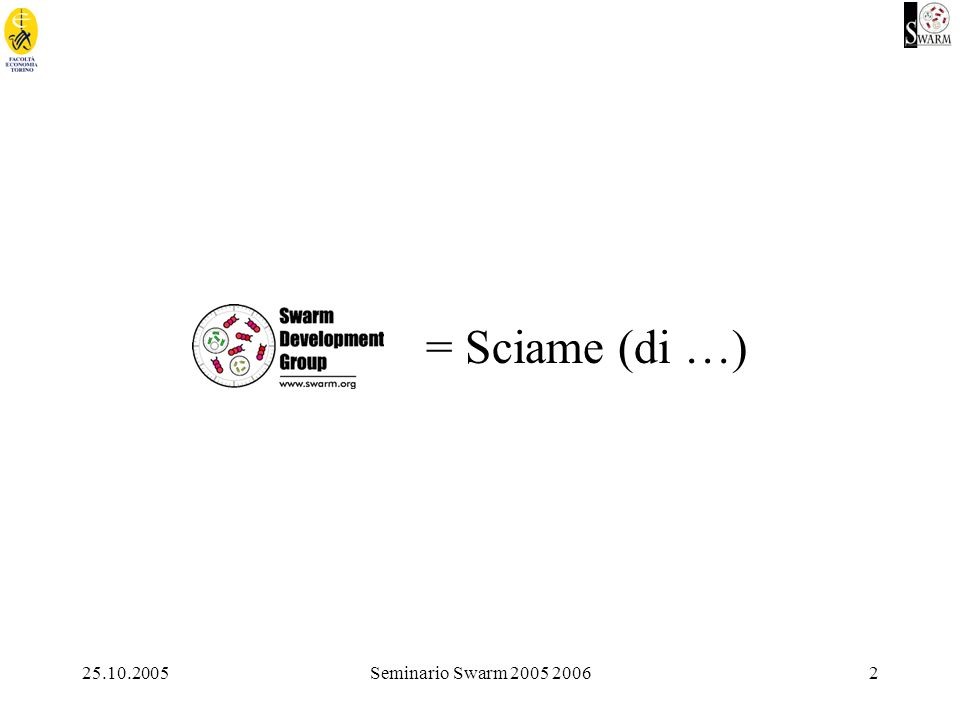 25.10.2005Seminario Swarm 2005 20062 = Sciame (di …)