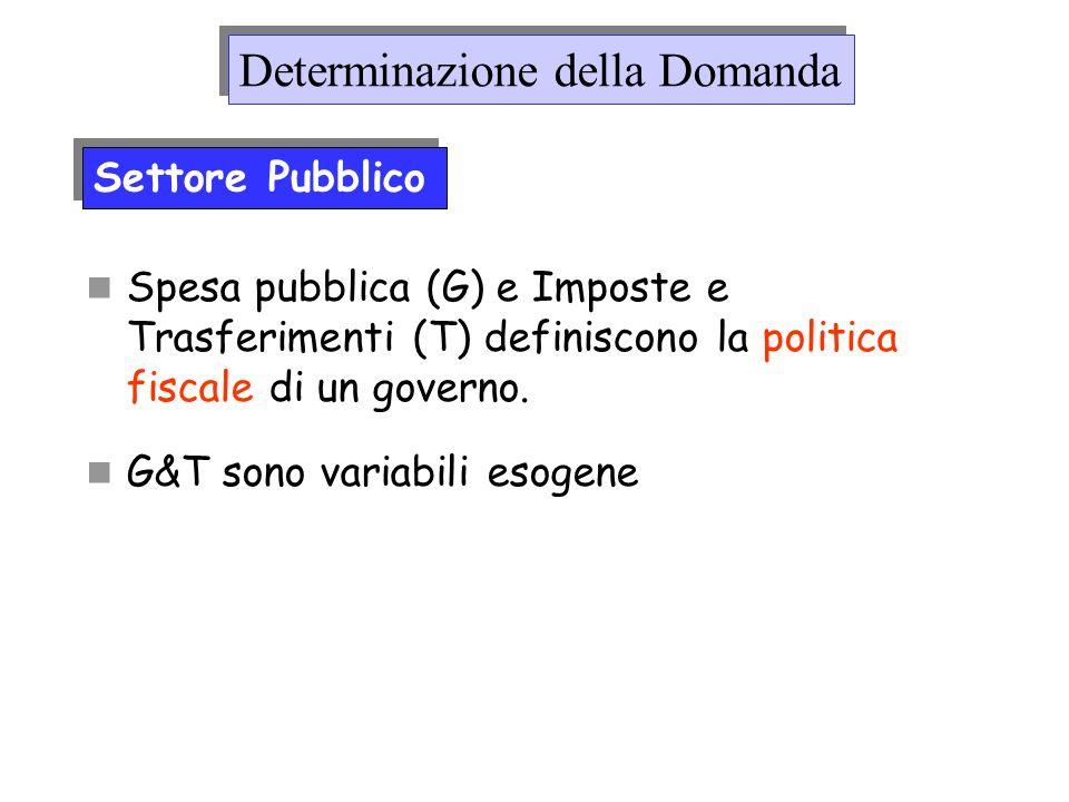 Spesa pubblica (G) e Imposte e Trasferimenti (T) definiscono la politica fiscale di un governo. G&T sono variabili esogene Determinazione della Domand