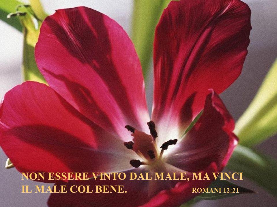 ….NON VI STANCATE DI FARE IL BENE. II TESSALONICESI 3:13