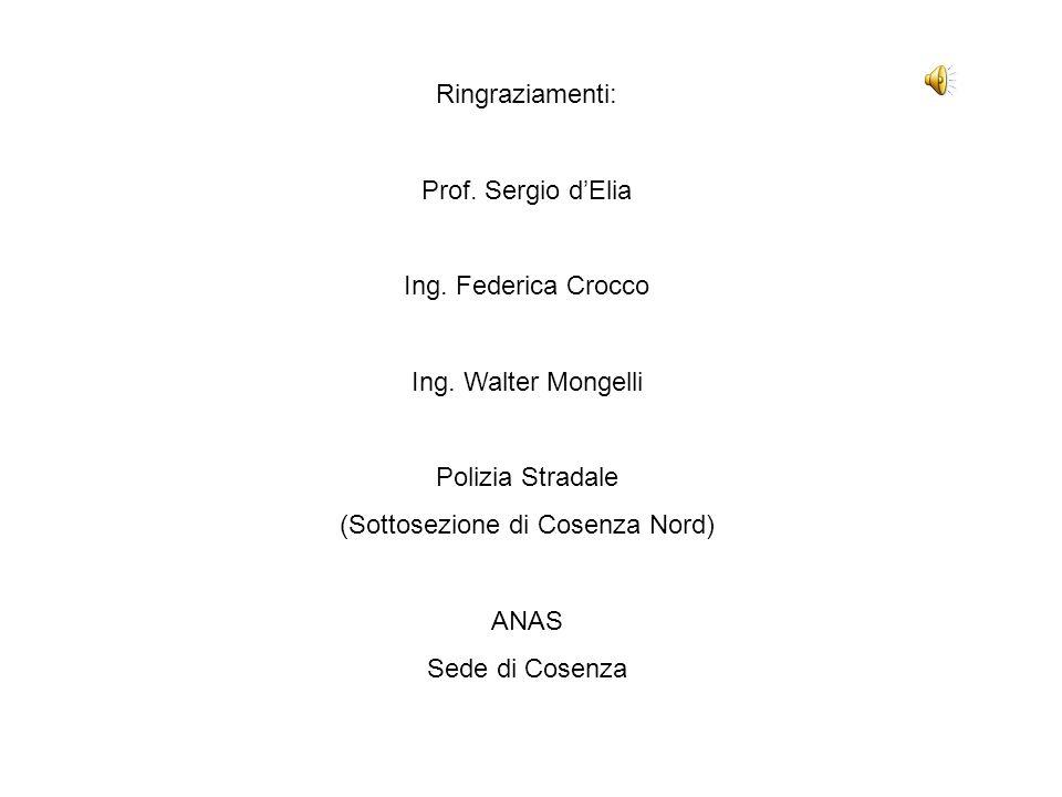 Ringraziamenti: Prof.Sergio dElia Ing. Federica Crocco Ing.