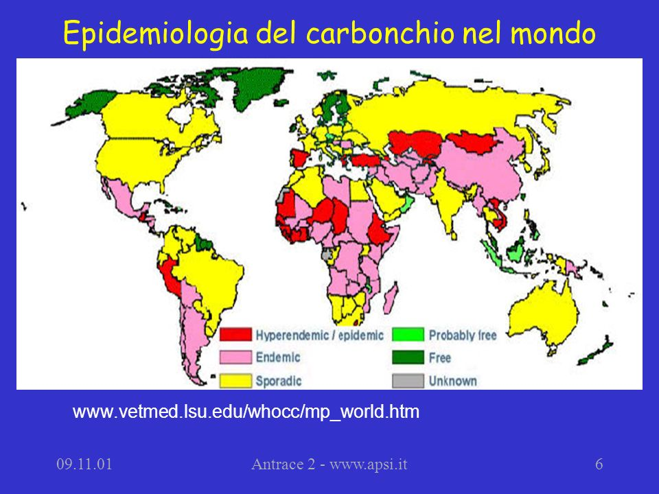 09.11.01Antrace 2 - www.apsi.it6 Epidemiologia del carbonchio nel mondo www.vetmed.lsu.edu/whocc/mp_world.htm
