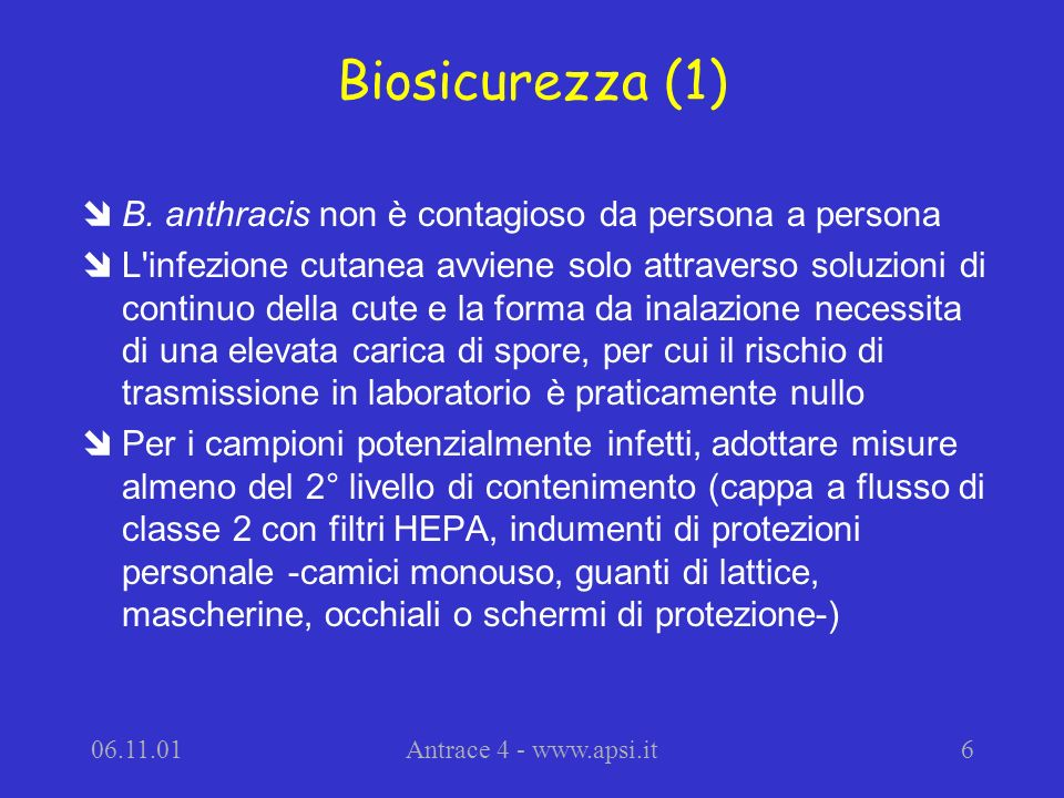 06.11.01Antrace 4 - www.apsi.it17 Caratteristiche colturali (3) îLa rapidità di crescita (12-15 ore ) di B.