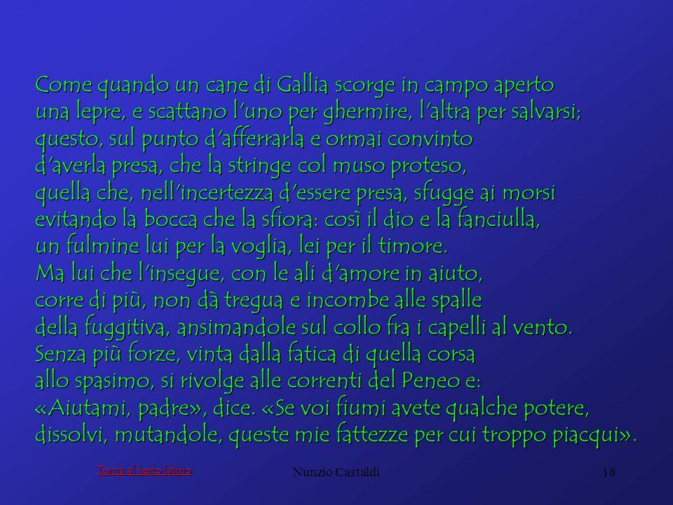 Nunzio Castaldi18 Come quando un cane di Gallia scorge in campo aperto una lepre, e scattano l'uno per ghermire, l'altra per salvarsi; questo, sul pun