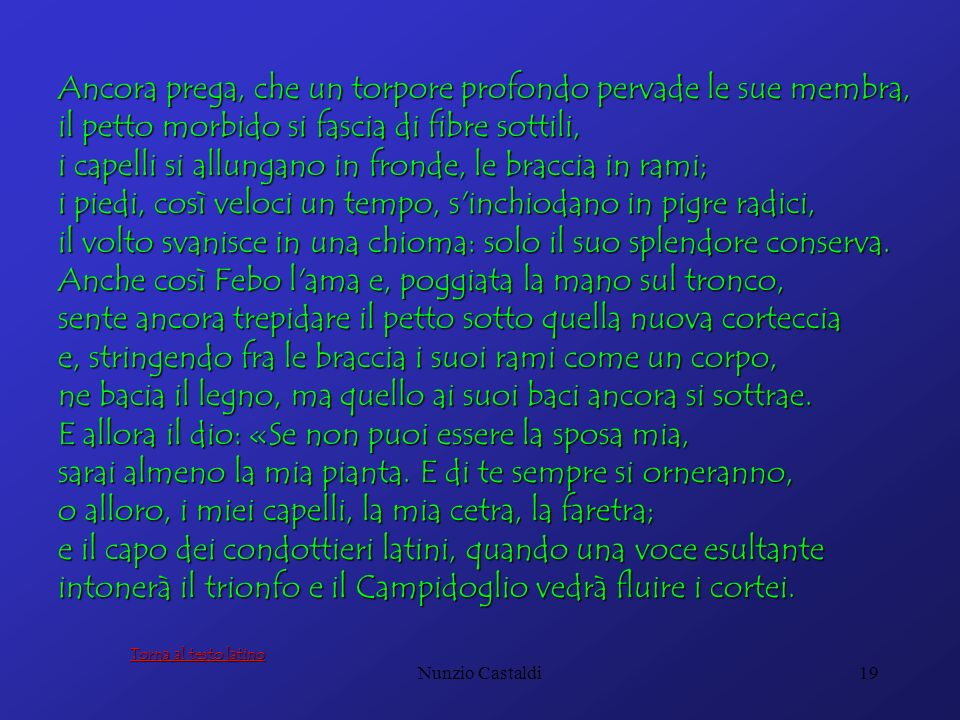 Nunzio Castaldi19 Ancora prega, che un torpore profondo pervade le sue membra, il petto morbido si fascia di fibre sottili, i capelli si allungano in