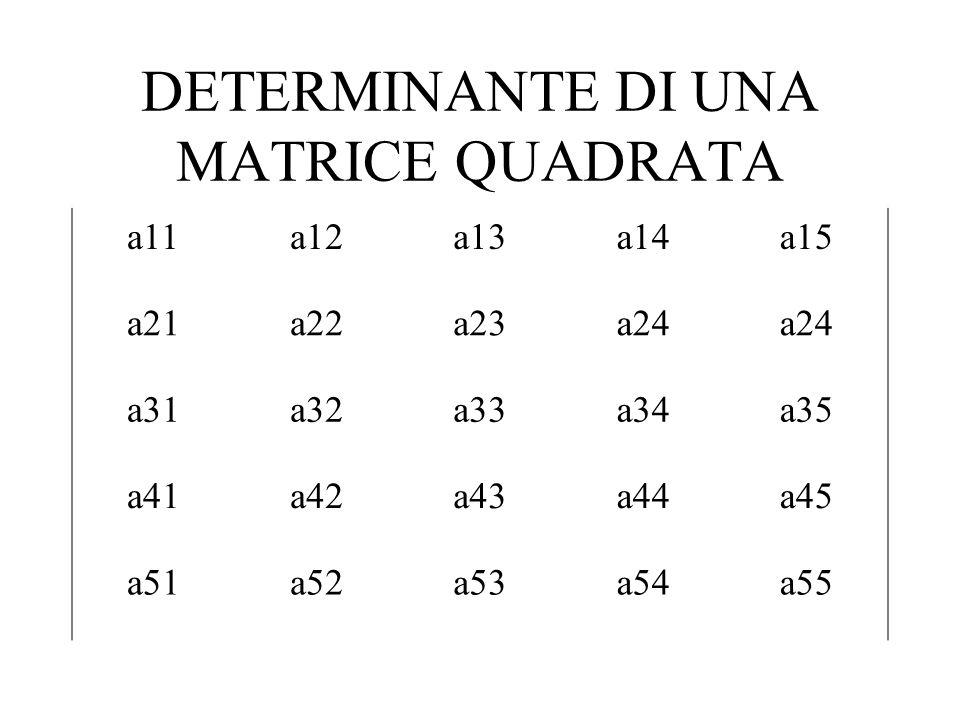 DETERMINANTE DI UNA MATRICE QUADRATA a11a12a13a14a15 a21a22a23a24 a31a32a33a34a35 a41a42a43a44a45 a51a52a53a54a55