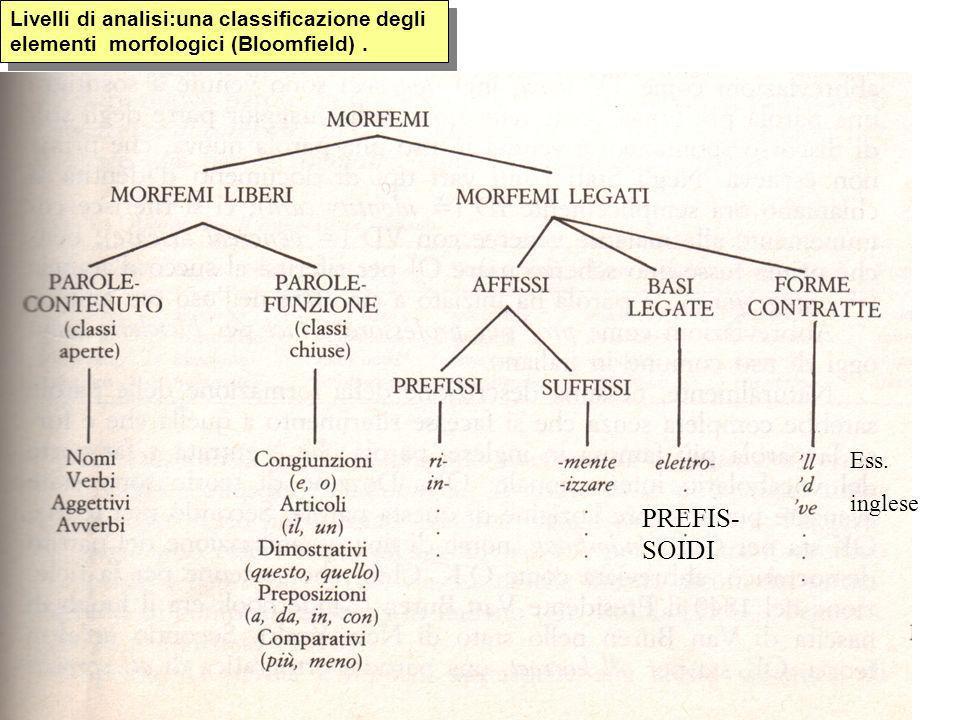 Livelli di analisi:una classificazione degli elementi morfologici (Bloomfield). Ess. inglese PREFIS- SOIDI