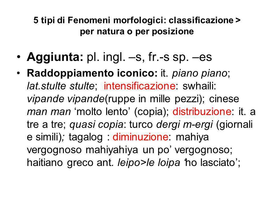 5 tipi di Fenomeni morfologici: classificazione > per natura o per posizione Aggiunta: pl. ingl. –s, fr.-s sp. –es Raddoppiamento iconico: it. piano p