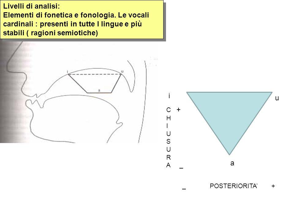 Livelli di analisi: Elementi di fonetica e fonologia. Le vocali cardinali : presenti in tutte l lingue e più stabili ( ragioni semiotiche) i a u C + H