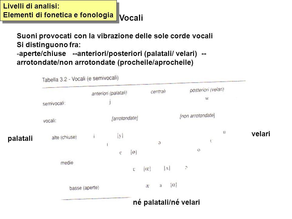 Vocali Suoni provocati con la vibrazione delle sole corde vocali Si distinguono fra: -aperte/chiuse --anteriori/posteriori (palatali/ velari) -- arrot