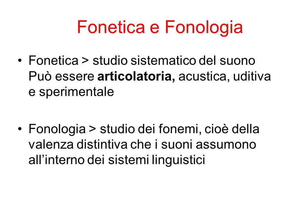 Fonetica articolatoria La fonetica articolatoria studia i suoni di una lingua e i meccanismi che accompagnano la loro produzione attraverso l apparato fonatorio.