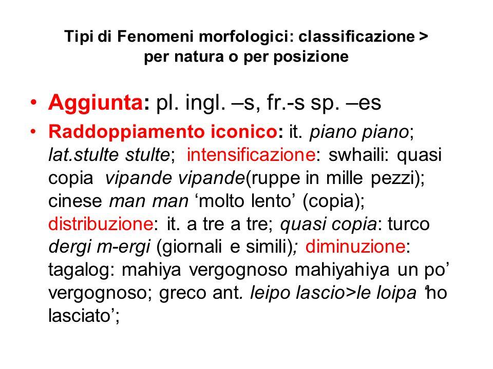 Tipi di Fenomeni morfologici: classificazione > per natura o per posizione Aggiunta: pl. ingl. –s, fr.-s sp. –es Raddoppiamento iconico: it. piano pia