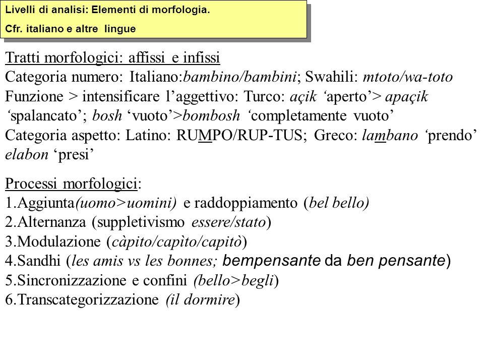 Livelli di analisi: Elementi di morfologia. Cfr. italiano e altre lingue Livelli di analisi: Elementi di morfologia. Cfr. italiano e altre lingue Trat