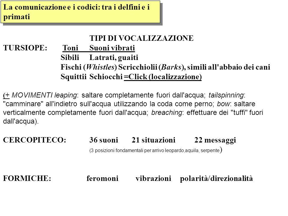 TIPI DI VOCALIZZAZIONE TURSIOPE: Toni Suoni vibrati SibiliLatrati, guaiti Fischi (Whistles) Scricchiolii (Barks), simili all'abbaio dei cani SquittiiS