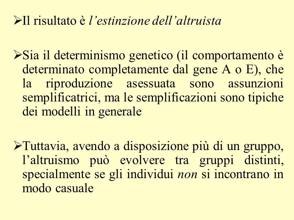 n individui (100), di cui np altruisti =20 e n(1-p) egoisti = 80 p (20%) è la probabilità di essere altruista; il numero di figli in assenza di altruismo è X (fitness, o grado di adattamento) c è il costo di un gesto altruistico per chi lo compie (c = numero di figli in meno a seguito del gesto altruistico: sorella zitella) Se b è il bene prodotto in media da ogni altruista, il bene complessivo prodotto dagli np altruisti sarà bnp e ogni individuo riceve in media da un membro qualunque che appartiene al gruppo (gli altri n-1, che è il divisore delle formule qui sotto) una quantità di bene che varia a secondo se è altruista o egoista (laltruista non beneficia del suo bene, altrimenti non sarebbe altruista) W(A) = X – c + [b(np-1)/(n-1)] W(E) = X + [b(np)/(n-1)] W(E)>W(A)