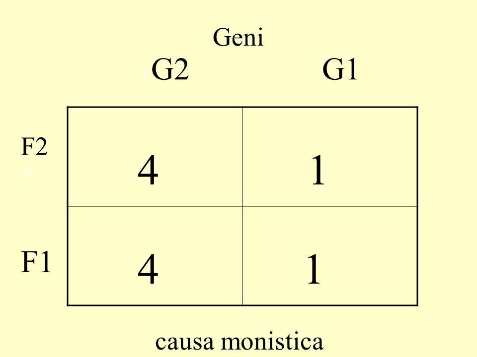 Geni 4 - - 1 + G2 + F2 G1 F1 Amb. F1 correlato a G1, F2 a G2)