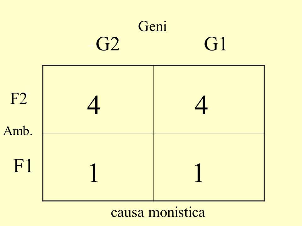 Geni 4 1 4 1 + G2 F2 + G1 F1 causa monistica