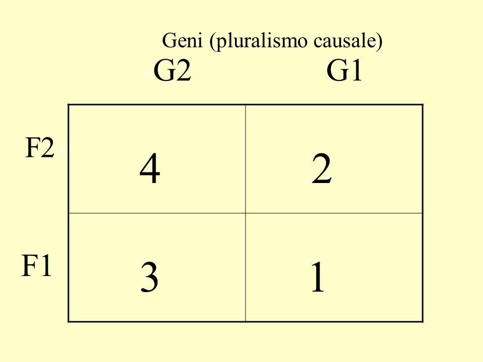 4 3 2 1 + G2 F2 + G1 F1 Geni (pluralismo causale) Amb.