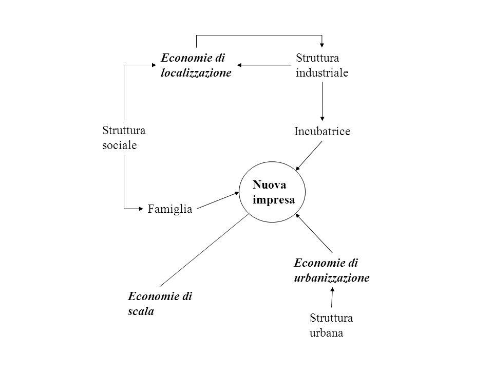Struttura sociale Famiglia Incubatrice Economie di localizzazione Struttura industriale Struttura urbana Economie di urbanizzazione Nuova impresa Econ